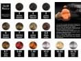 Color Mousse 7.44. Pianka koloryzująca miedziana 200ml